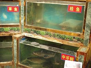 天津百餃園 (8).jpg