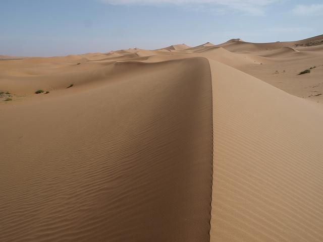 砂漠 (11).jpg