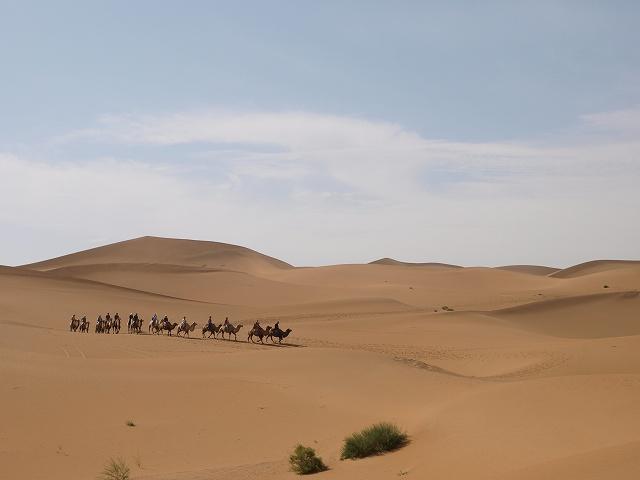 砂漠 (13).jpg