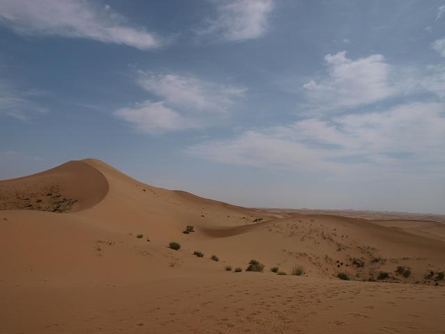 砂漠 (14).jpg
