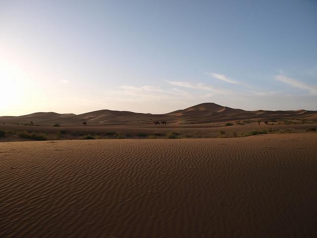 砂漠 (4).jpg