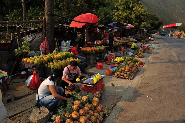 yunnanfruit (11).jpg