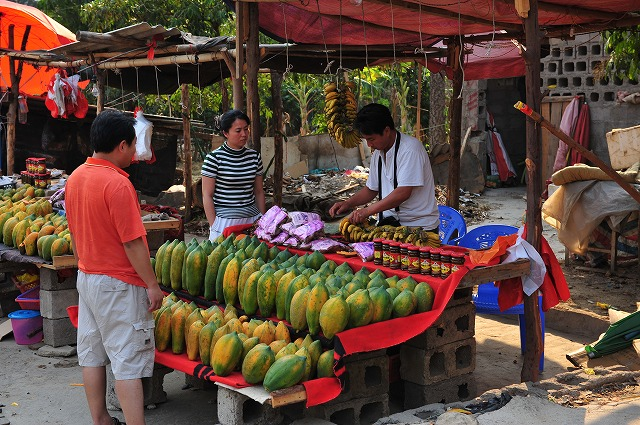 yunnanfruit (12).jpg